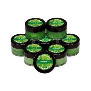 Buy Vaadi Herbals Super Value Pack Of 8 Lip Balm - Mint - Nykaa
