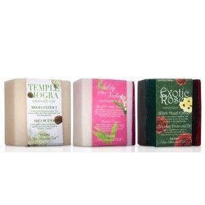 Buy Nyassa Floral Combo-2 (Pack of 3) - Nykaa