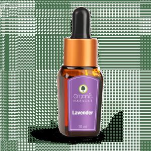 Buy Organic Harvest Lavender Essential Oil - Nykaa