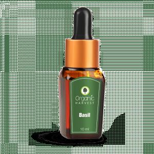 Buy Organic Harvest Basil Essential Oil  - Nykaa