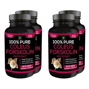 Buy Nutravigour 100% Pure Coleus Forskolin 20% Extract 500mg 4x60 Veg Capsules Weight Management Supplement - Pack Of 6 - Nykaa