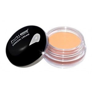 Buy MIB Professional Make-Up Conceal Cream - Nykaa