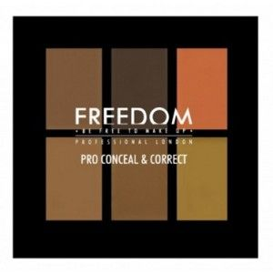 Buy Freedom Pro Conceal Palette - Nykaa
