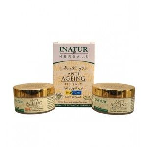Buy Inatur Anti-Ageing Therapy (Day/Night) Face Cream - Nykaa