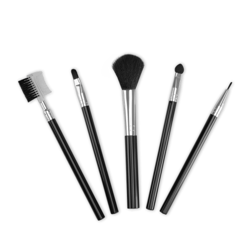 TS Makeup Brush Set Pack Of 5(Pack Of 5)