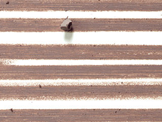 Brun - Taupe Brown