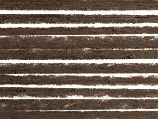 Taupe - Cool Deep Brown
